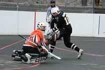 Hokejbalisté HC ŠD Písek prohráli v dalším kole 2. NHbL Jih s týmem HC Betonova Holubov 1:4.