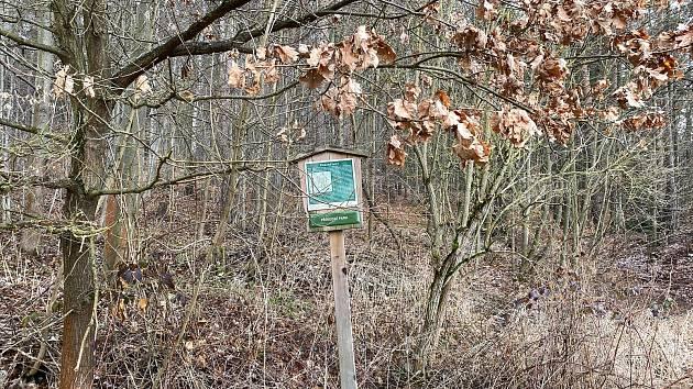 Na snímku je lokalita Ptáčkovna v Píseckých horách, kde byly nalezeny lidské ostatky.