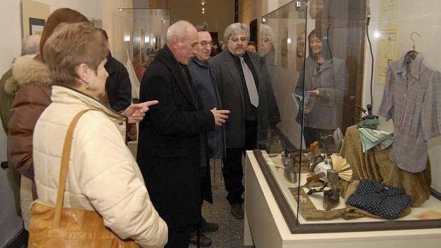 Histrické žehličky jsou až do 10. května k vidění v Milevském muzeu.