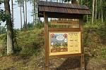 Nová výsadba v píseckých lesích.
