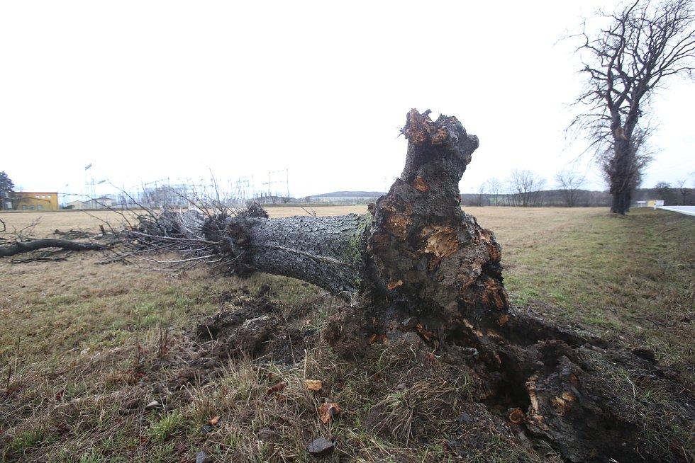Vichřice vyvracela stromy. Na mnoha místech to zkomplikovalo i dopravu. Snímek je z Chraštic.