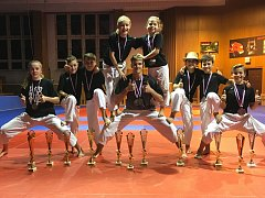 Úspěšní účastníci Mistrovství České republiky v karate z oddílu SKP karate Písek.