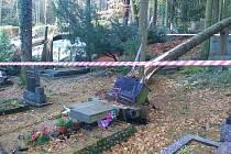 Polomy na Lesním hřbitově v Písku.
