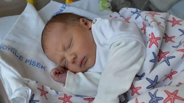Nicolas Majovský zPísku. Syn Andrey Trčkové a Andreje Majovského se narodil 24. 4. 2019 v10.11 hodin. Při narození vážil 3550 g a měřil 50 cm. Doma se na brášku těšila Adélka (5).