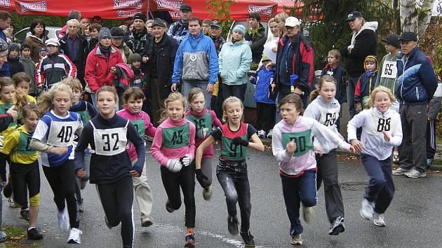 Letošního 85. ročníku populárního lesního běhu Kolem Ameriky v Písku se zúčastnil velký počet závodníků z řad mládeže.