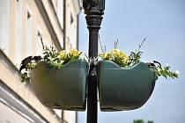 Kolemjdoucí v centru Písku mohou obdivovat novou květinovou výsadbu.