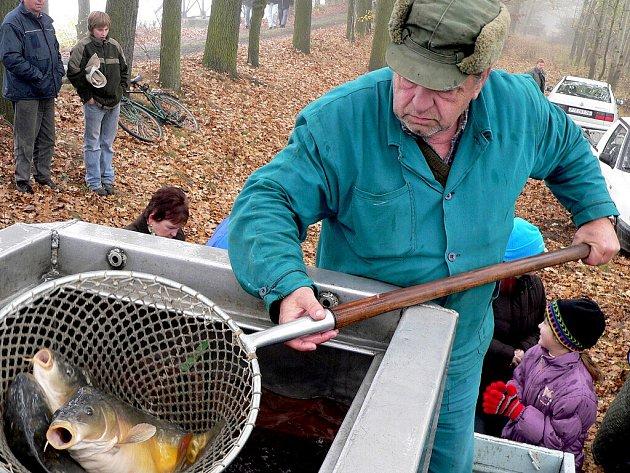 Výlov Selibovského rybníka si nenechaly (v sobotu 26. října) ujít stovky lidí.
