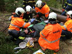 Hasiči na Písecku nacvičovali záchranu dělníka, kterého zavalil strom.