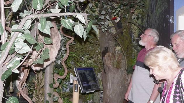 EXOTICKÁ PŘÍRODA V PROTIVÍNĚ. V pobočce Prácheňského muzea v Protivíně byla otevřena nová expozice Exotická příroda a výstavy Ostrovy Sandokana. Diváky při slavnostním otevření zaujal indonéský soubor Kintari.