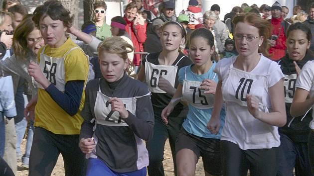 V sobotu 17. 10. v 9.00 hodin odstartuje první kategorií letošní 84.ročník populárního lesního běhu Kolem Ameriky v Písku. Náš snímek je z loňského ročníku tohoto závodu.