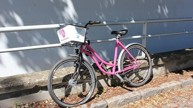 Růžová kola.