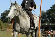 Western riding ve Zlivicích - 13.9. 2008.
