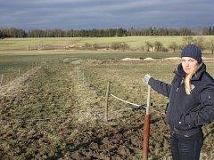 Markéta Krejčová ukazuje směrem k ohradě, odkud koně v noci odvedli.
