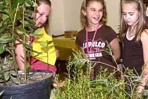 Bylinkovou výstavu navštívily i žákyně ZŠ Husova.