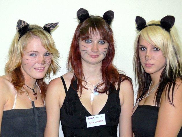 Kočičky. Hostesky v kočičích kostýmech provázely návštěvníky provozem nové firmy Asan, která  právě zahájila výrobu ekologických podestýlek pro kočky a další drobná domácí zvířata.