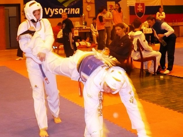 VÝBORNÉ VÝKONY. Na snímku protivínská Martina Čížková odráží útok soupeřky na hlavu.