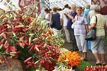 Tradiční výstava květin v Čimelicích.
