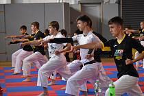 Letní soustředění SKP karate Písek.