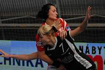 V tomto souboji v loňské sezóně faulovala Zuzanu Martenkovou protihráčka z Jindřichova Hradce Zuzana Kupková. Interliga začíná tuto sobotu zápasem Písek – Partizánské.