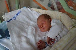 Petr Fritz zProtivína. Syn Kataríny a Petra Fritzových se narodil 4. 10. 2018 ve 4.34 hodin, při narození vážil 3280 g a měřil 49 cm. Doma brášku přivítala Vivien (8,5).