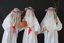 Děvčata tradičně oblečená do bílého roucha navštěvovala jednotlivá stavení ve vsi.