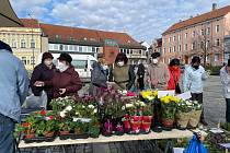 Obnovené trhy na milevském náměstí navštívily desítky lidí.