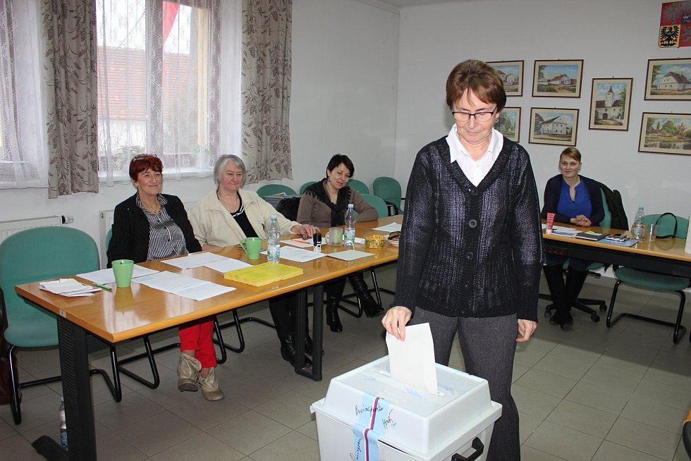 Volby v Cerhonicích.