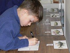 ZNALOSTI. Na fotografii poznává druhy ryb sedmiletý Marek Handrejch.