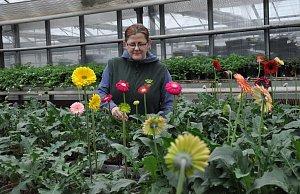 V Zahradnictví Písek už se připravují na jaro