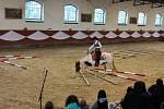Jarní přehlídka plemenných koní v píseckém hřebčinci.