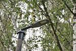 Zrekonstruované veřejné osvětlení U Skály v Mirovicích.