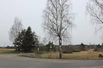 Vykácené břízy ve Zvíkovském Podhradí.
