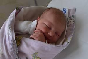 Nellie Malečková zBechyně. Dcera Kateřiny Průšové a Aleše Malečka se narodila 7. 7. 2019 v1.09 hodin. Při narození vážila 3150 g a měřila 48 cm.