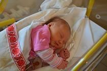 Berenika Pašková z Netolic. Prvorozená dcera Nelly Horinkové a Jana Paška se narodila 24. 9. 2020 v 9.17 hodin. Při narození vážila 4850 g a měřila 51 cm.