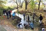 Výlov Podkostelního rybníku v Putimi.