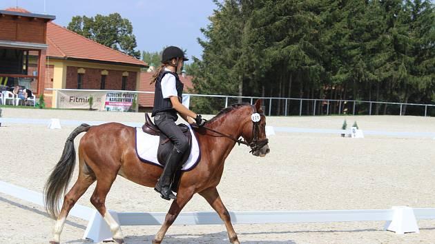 Mistrovství ČR Working Equitation v píseckém hřebčinci.