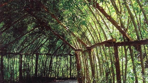 Vrbové proutí je jedním z hlavních stavebních materiálů na novém dětském hřišti, které vyrůstá na Jiráskově nábřeží v Písku.