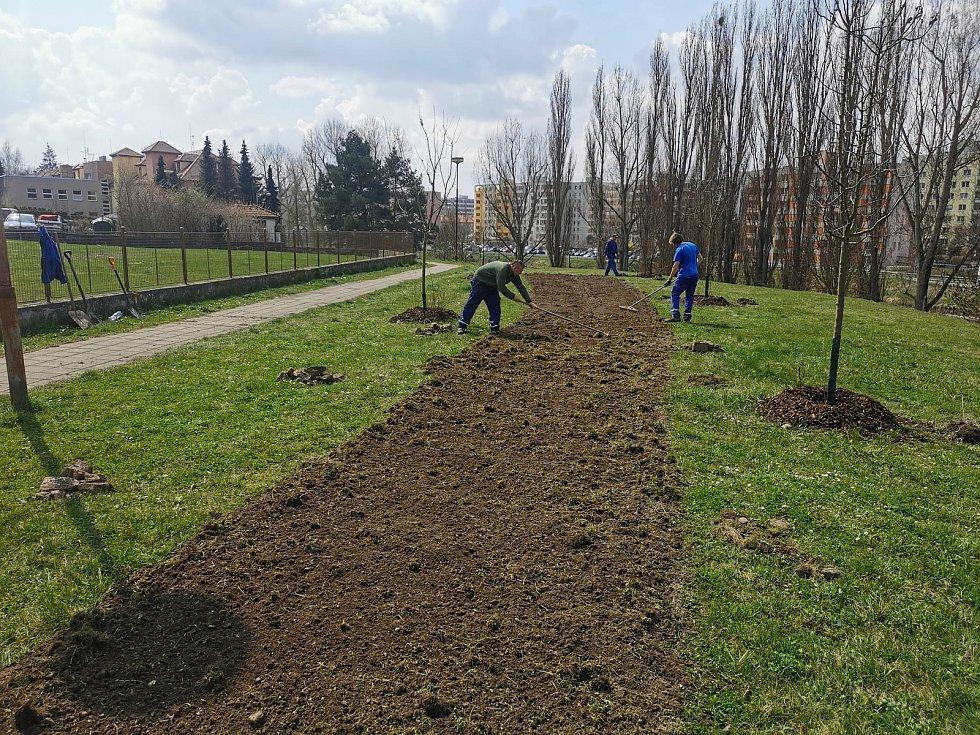 Městské služby Písek zakládají květinovou louku u Otavy