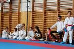 Sportovní hry mládeže partnerských měst.