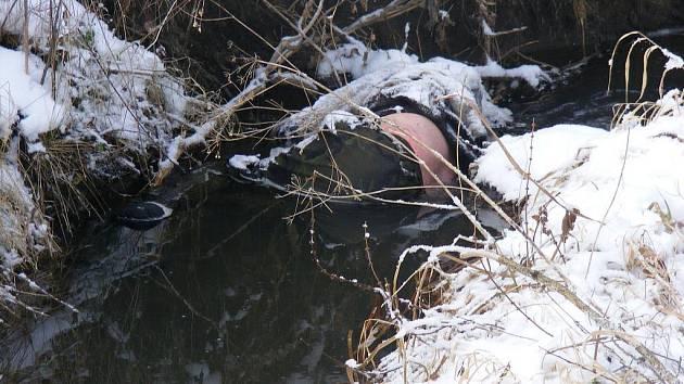 Mrtvola muže ležela v potoce.