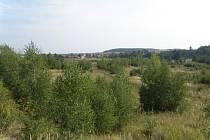 Na ploše, která byla původně určena k rekultivaci, docházelo nejméně od roku 2011 k postupnému zarůstání vegetací a vývoji cenného biotopu, který byl tvořen mozaikou dřevin, travnatých a holých ploch.