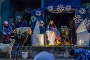 Rozsvícení vánočního stromu na Tylovce