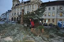 Kácení vánočního stromu v Písku.