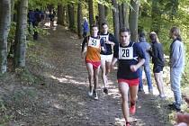 Před několika dny se v Písku uskutečnil v pořadí již 86. ročník lesního běhu Kolem Ameriky, který měl letos početnou účast startujících.
