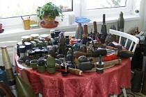 Při domovní prohlídce bytu na píseckém sídlišti Jih policisté nalezli desítky kusů munice