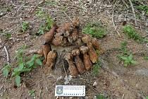 Vykopané dělostřelecké miny nechal nálezce na místě a zmizel.