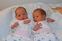 Dominika a Veronika Jírovy ze Zálší u Soběslavi. Dcery Lenky a Zdeňka Jírových se narodily 16. 1. 2019. Dominika (vlevo) se narodila v10.27 hodin, vážila 2650g a měřila 46 cm. Veronika (vpravo) se narodila v10.28 hodin, vážila 2500 g a měřila 46 cm. Dom