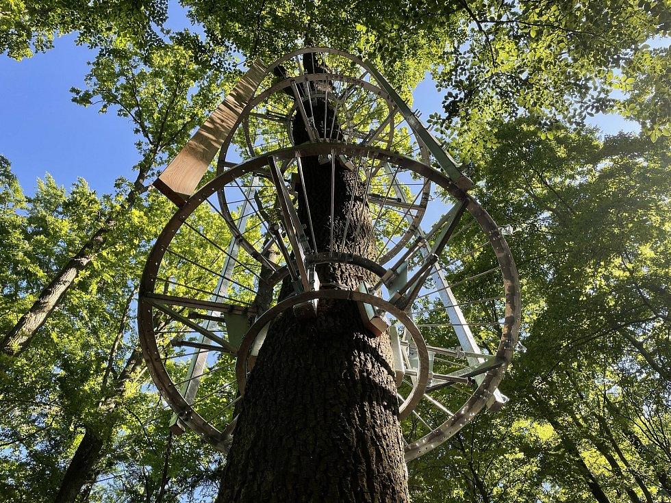 Cesta drahokamů v blízkosti chaty Živec u Písku. Pracovníci zhotovitelské firmy ukotvují na stromech jednotlivé díly atrakce.