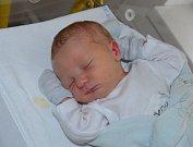 Nikolas Sljusarenko zVodňan. Prvorozený syn Dany Kukanové a Olekxa Sljusarenka se narodil 20. 3. 2019 v19.55 hodin. Vážil 3750 g a měřil 52 cm. Foto: Jana Krupauerová