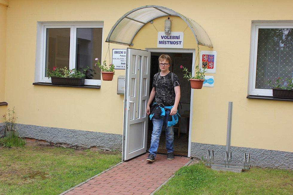 Volby do Evropského parlamentu ve Vráži.